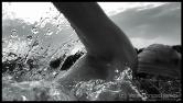 Freiwasserschwimmen, Freiwassertechnik, Open Water Swimming Technique, Kraulschwimmen, Kraul Schwimmen, Kraultechnik, Freestyle Swimming Technique