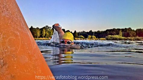Freiwasser (Wettkampf oder nicht) - Veras Fotoblog